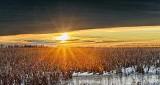 Clouded Sunrise P1380659-65