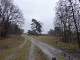 Stakenbergweg