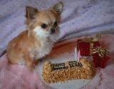 Bella's Second Birthday 2019