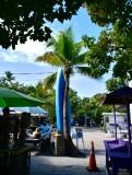 Kayak Rental at Robbie's, Lower Matecumbe Key, Florida Keys, Florida 111