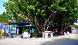 Robbie's, Lower Matecumbe Key, Florida Keys, Florida 116