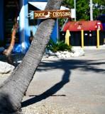 Duck Crossing at Robbie's, Florida Keys, Florida 145