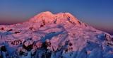 Pink Mt Rainier National Park, Washington 451