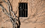 Window on building in Old Town Albuquerque, New Mexico 111