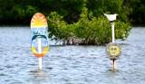 Toilet Seat Cut west Islamorada, Florida Keys, Florida 362