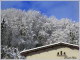 janvier 2019 au village