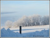 le yoyo de notre hiver québécois