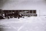 Lysanders in the Snow