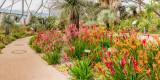 IMG_7672_3_4_5_6_7-Pano-Edit.jpgWestern Australia Garden  - Mediterranean Biome - © A Santillo 2017