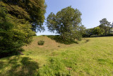 IMG_8870.jpg The remains of the earthworks of Lydford Norman Castle - © A Santillo 2020