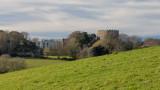 IMG_8560 Trematon Castle - © A Santillo 2020