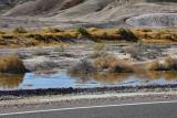 Amargosa River Tecopa