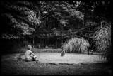 Leica M Monochrome type 246