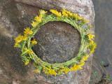 Wildflower Art found at Howard Eaton Reservoir