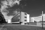 Dessau - The Bauhaus city bw 2020-05