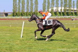 Horses races in Paray