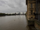 20190909_170917 A Wider View of the Thames