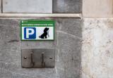 Lisbon, A Dog Friendly City