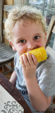 Corn on the Cob, II