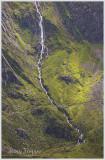 Mountain stream-2.jpg