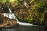 Coed Cymerau waterfall