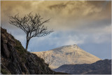 A view of Moel Siabod