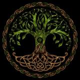 Redcedar Tree