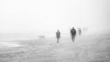 Figures in the Fog.jpg