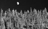 Eastern Sierra Moonrise