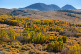 Conway Summit Fall Colors