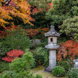 Japan Autumn Colour