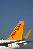 PEGASUS_AIRBUS_A320NEO_AYT_RF_5K5A0976.jpg
