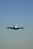 ANA_AIRBUS_A380_NRT_RF_5K5A1437.jpg