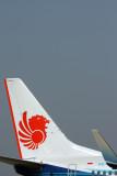 LION BOEING 737 900ER CGK RF IMG_4546.jpg