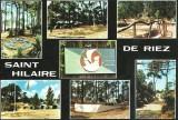 Colonie de Vacances de Saint Hilaire de Riez