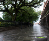 New Orleans' Pirates Alley during Coronavirus crisis