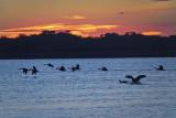 Sunrise Takeoff.