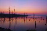 Sunrise Aug26
