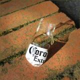 Corona Extra- Smashed