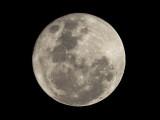 Full Moon 2 E-M10 II with 75-300 lens