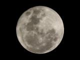Full Moon SH-1