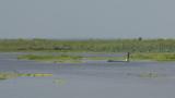 Natural swamp Nong Haan.
