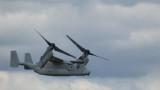 osprey10.jpg