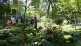 Garden at Germania