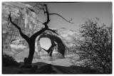 Monument Valley-A Back County Arch, Navajo Nation, Arizona