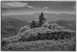 The Sentinel -Roan Highlands With Mid-Day Light.