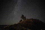 The Milky Way: Ridgeway Near The Dallas Divide, Colorado
