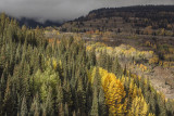 Storm Clouds and Fall Colors ON The San Juan Scenic Byway, Colorado
