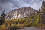 Late Afternoon At Kebler Pass, Colorado