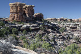 Mushroom Rock Formations, The Needles  Section Of Canyonlands At Mid-Morning